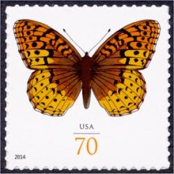 #4859 Great Spangled Fritillary Butterfly