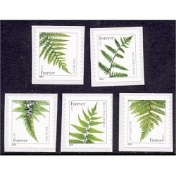 #4973-77 Ferns Forever 2015 Reprint, Dated 2014, Set of Five Singles